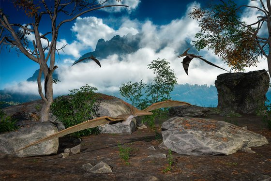Ptenarodon
