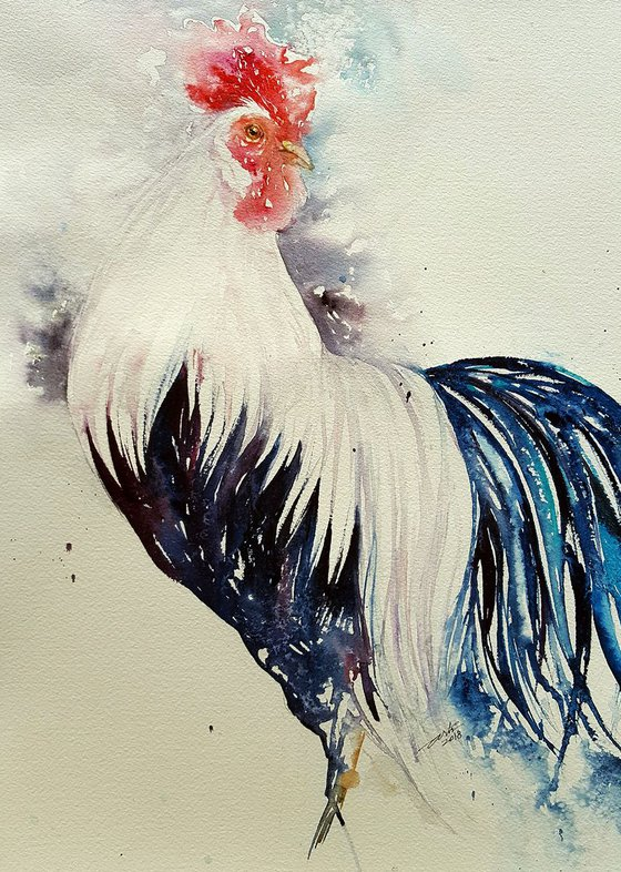 Silvie_Long Tailed Rooster
