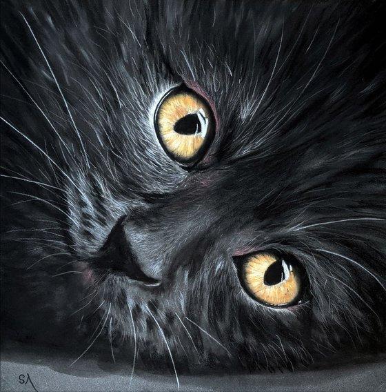 Cats Eyes III  (Original Painting)