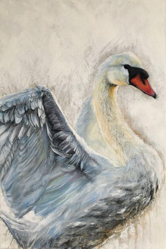Swan, Blue Swan, original painting