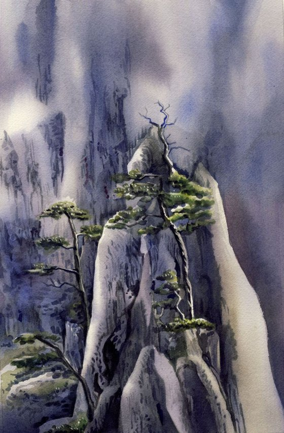 The trees on the mountain