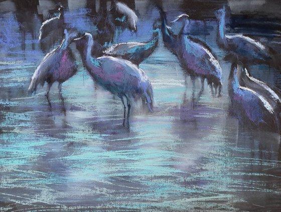Early Morning. Migrating Birds at ha-Hula valley . 3rd edition.
