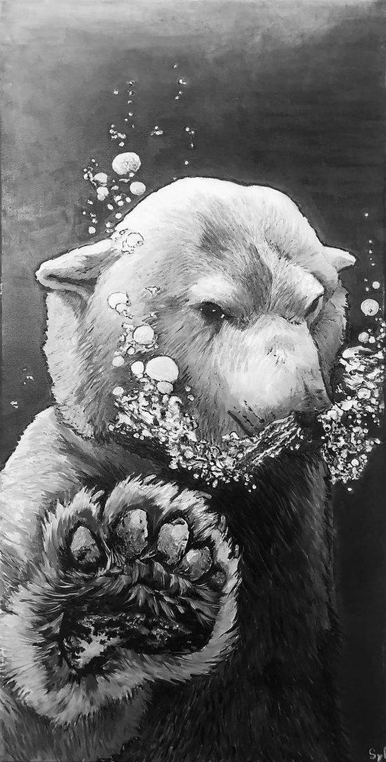 L'ours à bulles
