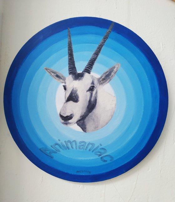 """Animaniacs presents""Oryx"