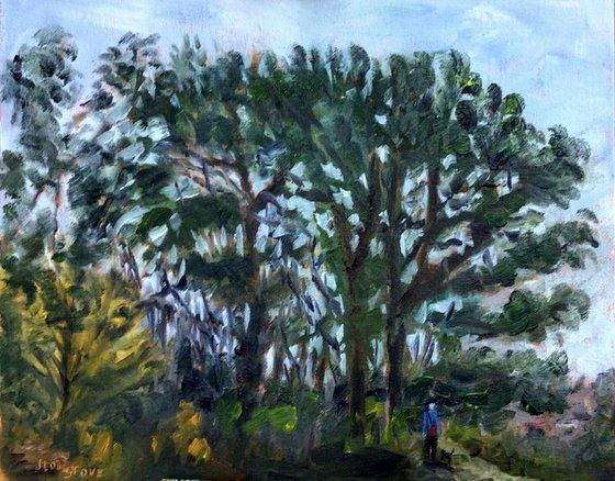 Coastal Trees - An original oil painting!