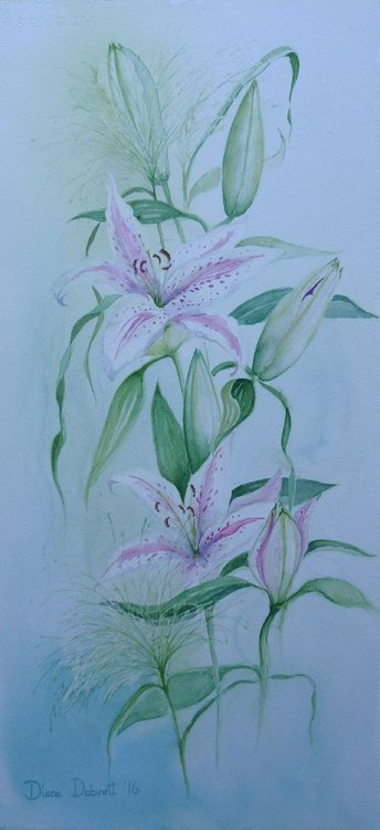 8f32236becf White Lilies Watercolour by Diana Dabinett