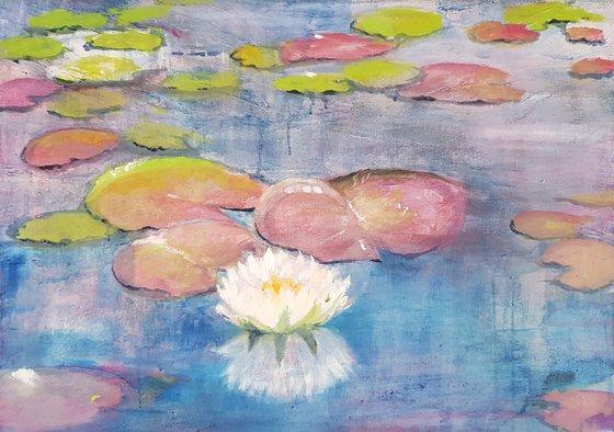 Waterlilies n. 6