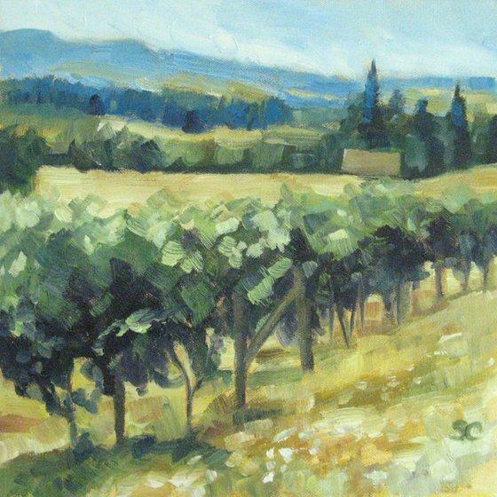 Cooper Mountain Vineyard