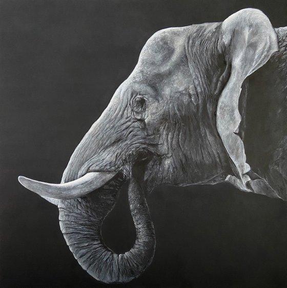 Elephant head,original painting