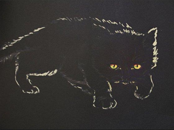 Black kitten in a dark room 2