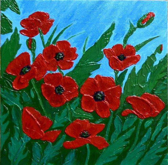 Poppies / Maquis 25 X 25 cm