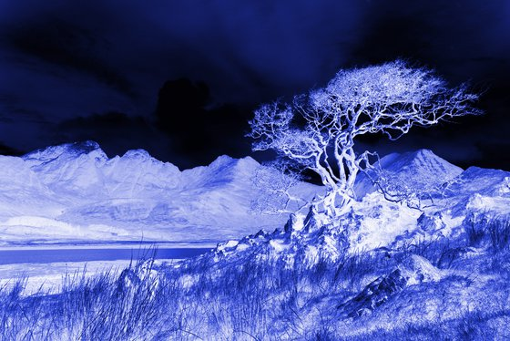 Ghost Tree, Blue, abstract Scottish mountain landscape