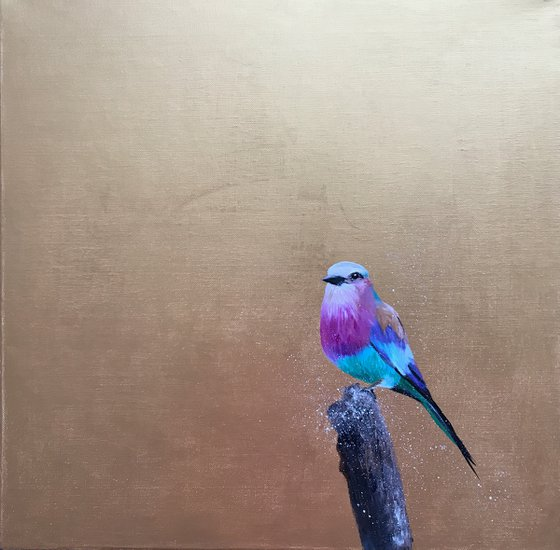 Lilac Breasted Roller