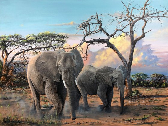 """""""Africa before sunset"""""""