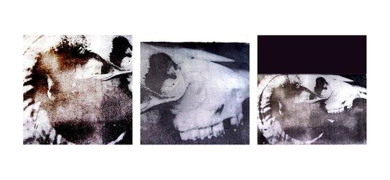 Skull triptych #2