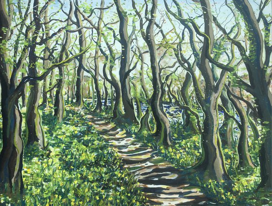 Spring Woodland Morning