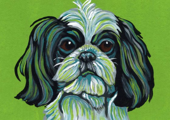 ACEO ATC Original Painting Shih Tzu Pet  Dog Art-Carla Smale