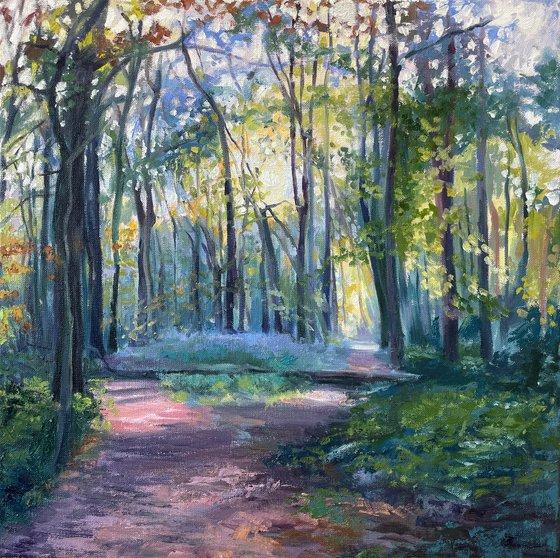 British Woodland Walk