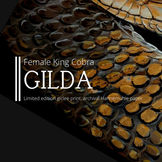 Gilda, snake (King Cobra)