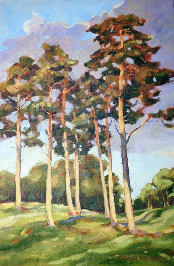 Pines 2 SALE