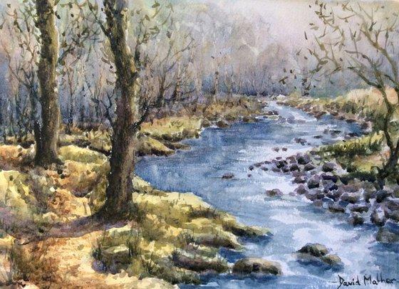River Meavy 2 Dartmoor