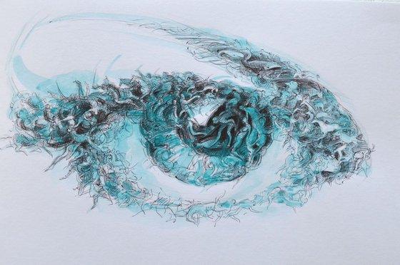 the sea eye