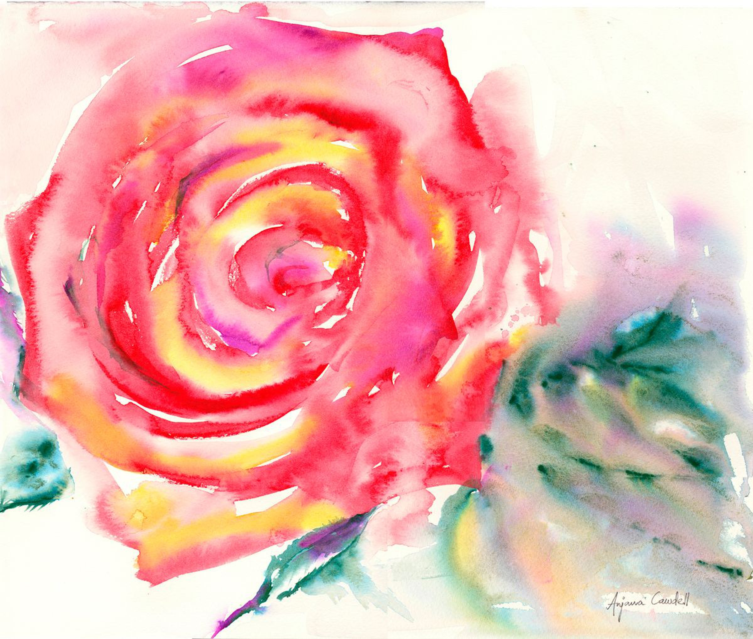Passion rose painting valentines day gift watercolour painting of rose rose wall art