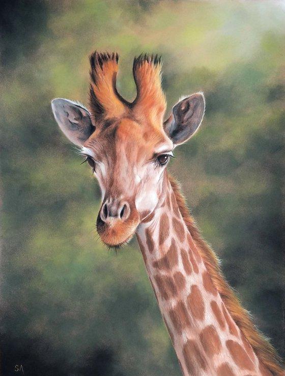 Giraffe (Original Painting)