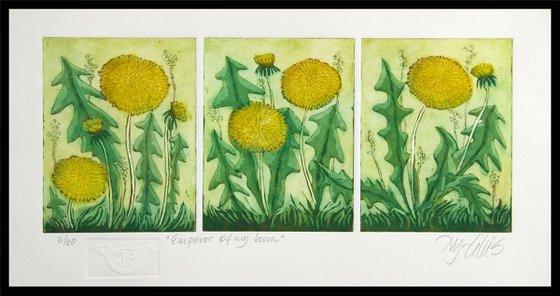 Dandelions - aquatint etching