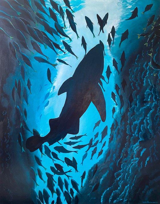 Shark Rising
