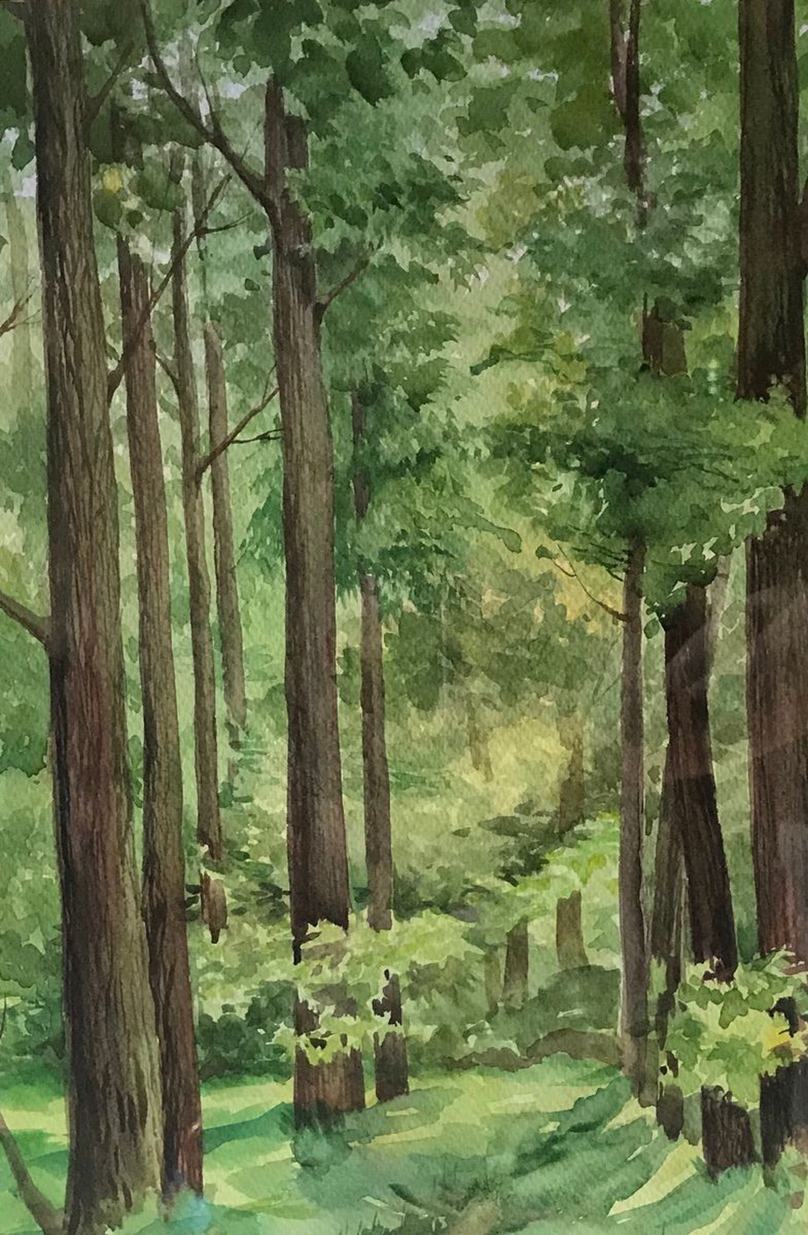 watercolor landscape summer forest artfinder watercolor landscape summer forest