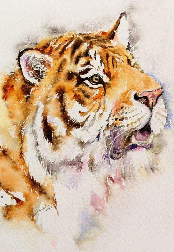 Igor the Tiger
