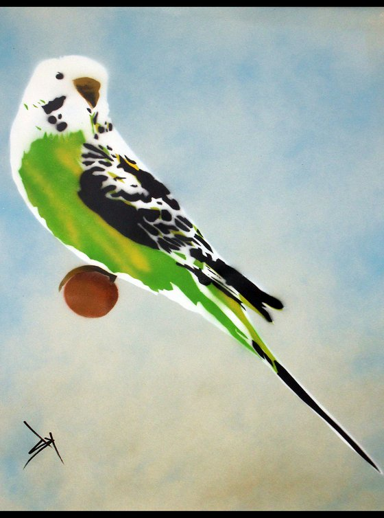 Grandma's other budgie (on paper) + free poem.