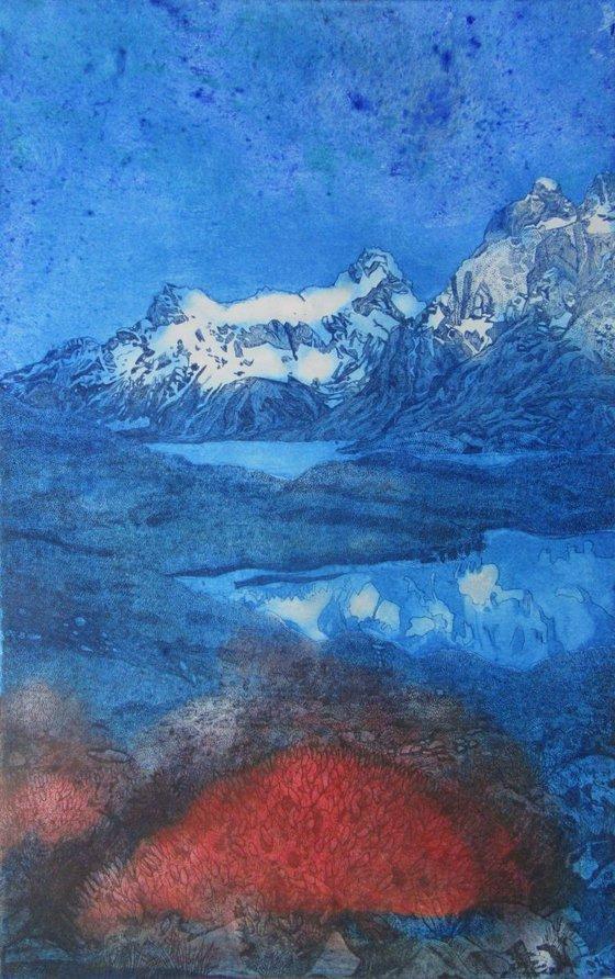 The Fire Bush, Torres Del Paine National Park, South America (Colour3)