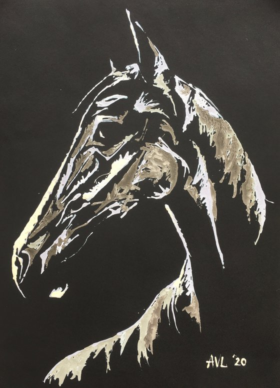 Equine Expression