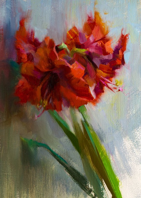 'Amaryllis' - original oil painting, alla prima oil painting, one of a kind