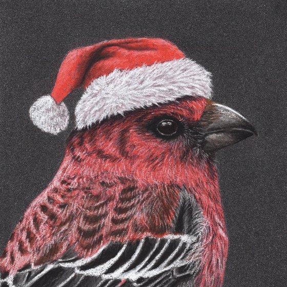 "Original pastel drawing bird ""Pine Grosbeak"""