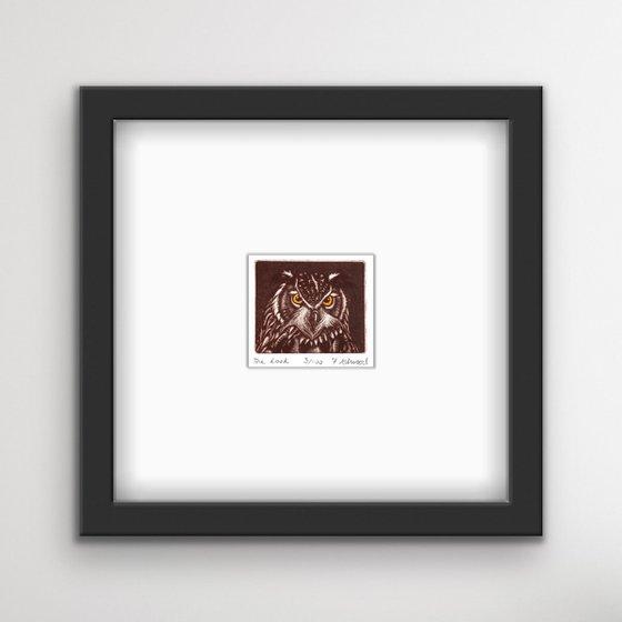'The Look' - Owl Mezzotint Print