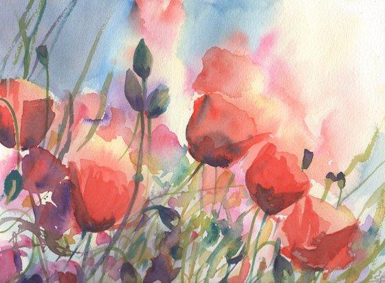 Watercolour Poppy Fields 2