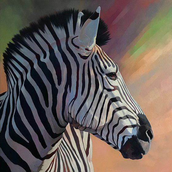Dreamy zebra