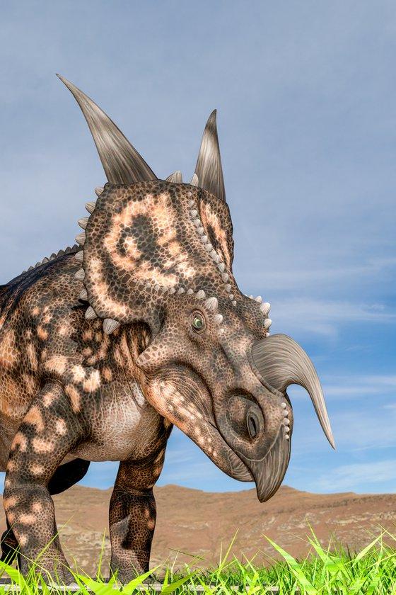 Einiosaurus