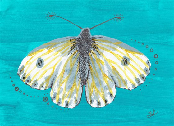 Kintsugi Butterfly Antennae Study