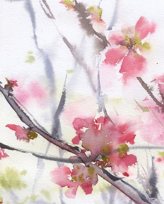Pink blossom 2. Tender flowers