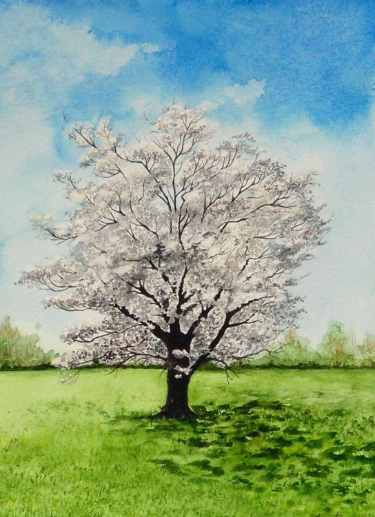 White Flowering Dogwood Tree Painting Artfinder