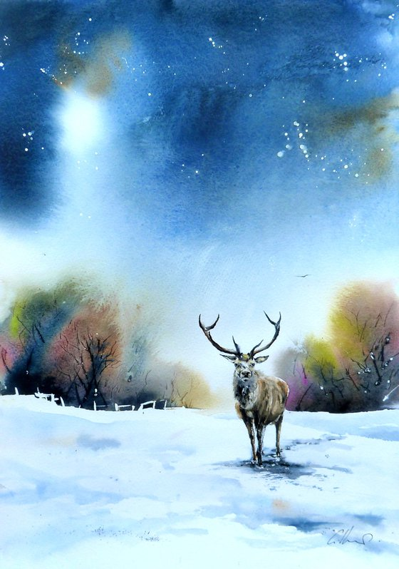 A Stag in Snow. Original watercolour Painting.