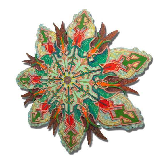 Mammillaria Copepod