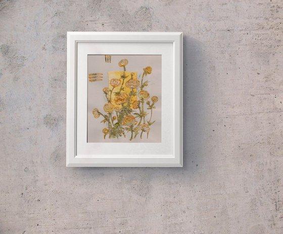 Yellow Globeflowers or Yellow Trollius