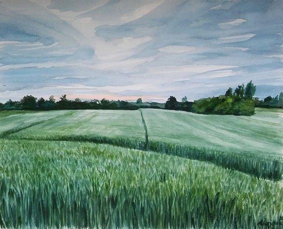 Watercolor painting- landscape
