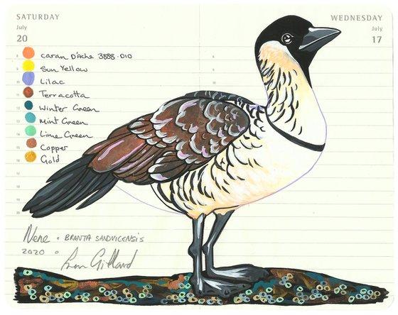 Birds of Oceania: Nene (Hawaiian Goose)