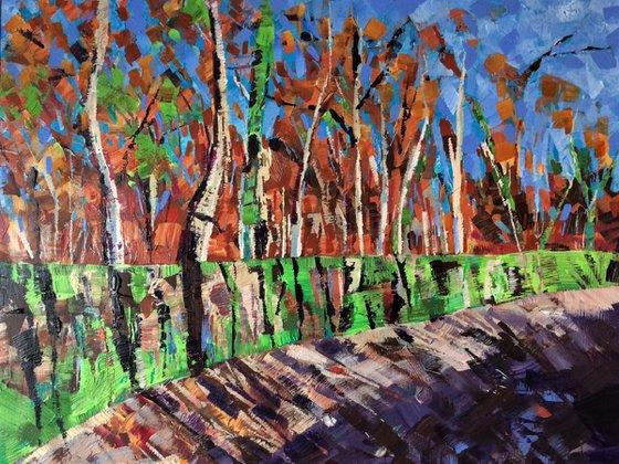 Mossy Wall, Brinscall